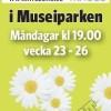 Zumba i Museiparken Karlstad