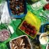 LCHF matsäck på Skara Sommarland