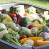 Förbereder grönsaker