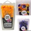 Ätbara blommor – Bloom bites i Sverige