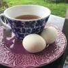 Tillbaka till ägg o te