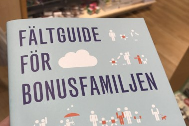 Bonusfamiljen – hur får vi det att gå ihop!