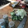 Nasi Lamak – Asiatisk pytt
