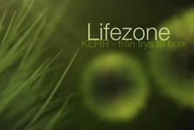 Kefir – från frys till burk, jag på youtube!