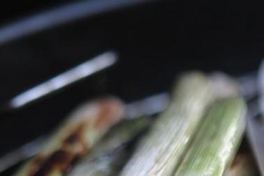 Fett- & fiskgrillning