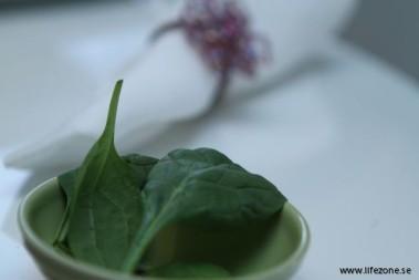 Behöver vi frukt och grönt för antioxidanter?