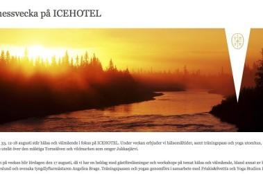 Kostföreläsning på IceHotel, Jukkasjärvi