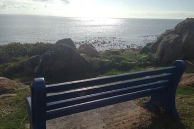 'Whale watching' på morgonpromenaden