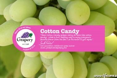 Vindruvor = sockervadd (?)