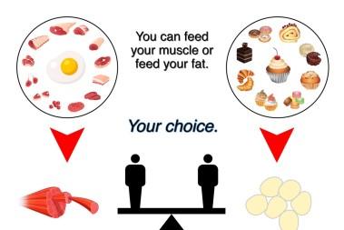 Mata musklerna och inte fettdepåerna!