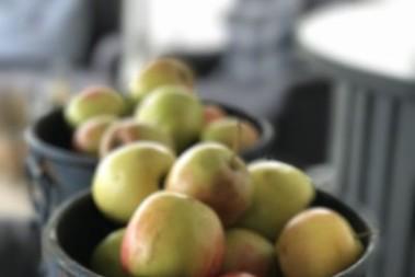 Äpplen eller äpplen? Socker och socker…
