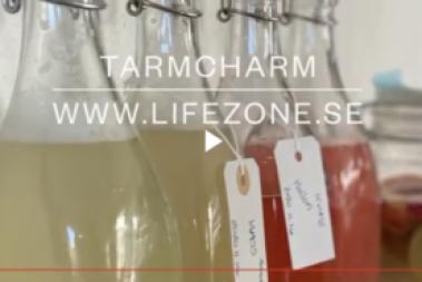 Från frukt till fermenterad på flaska (kvass)
