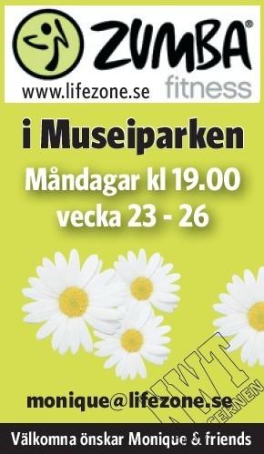 musei2J